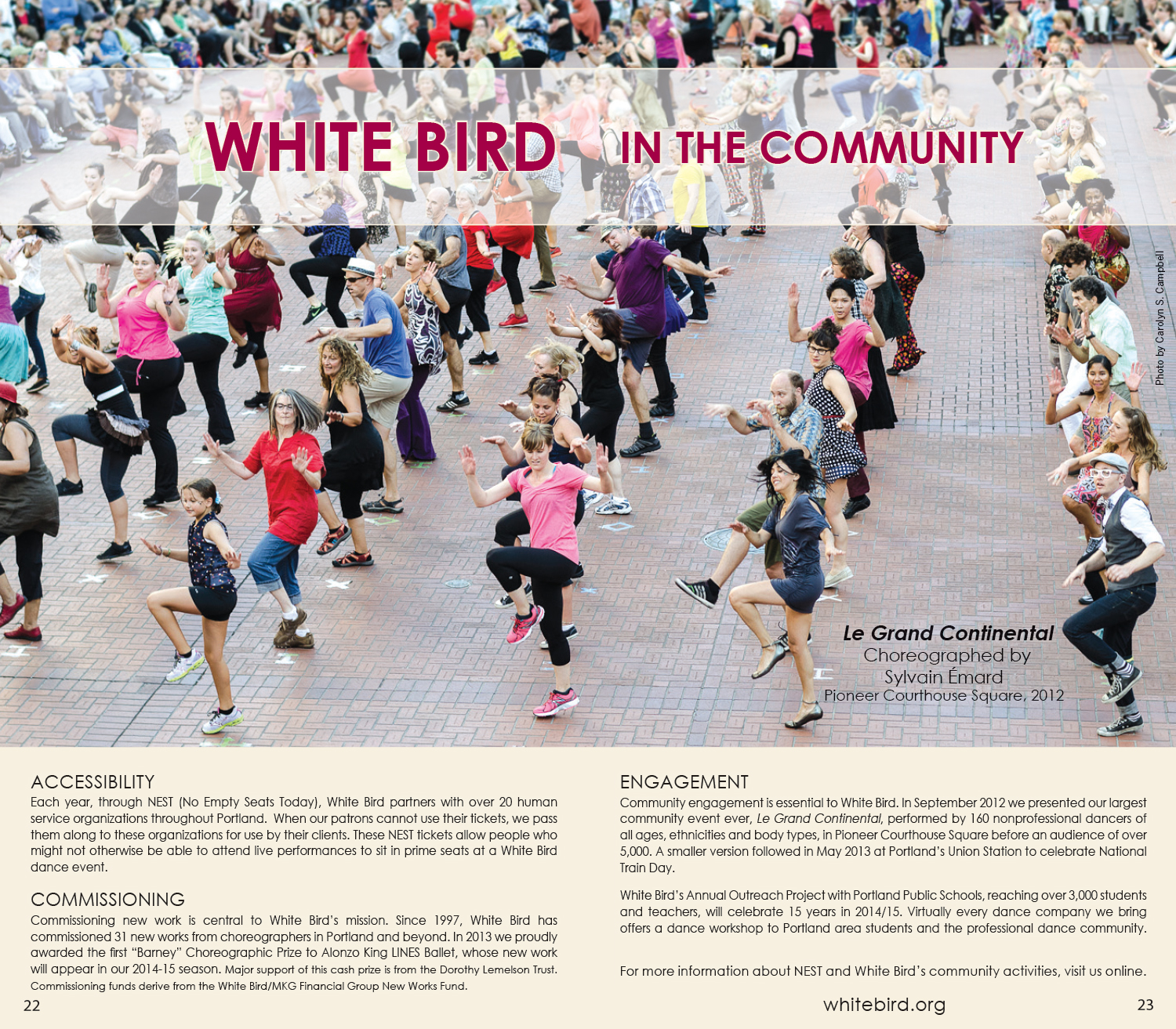 Sarah Toor Brochure Design, White Bird